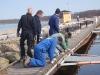 Y-bommarna på A-bryggan sjösätts